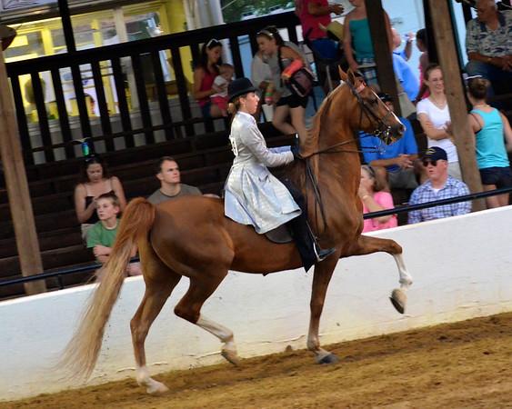 2012 Burlington Spring Horse Show