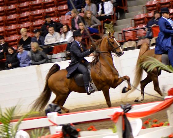 2012 River Ridge Horse Show
