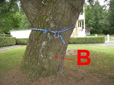 Sur l'arbre B je place mon premier amarrage