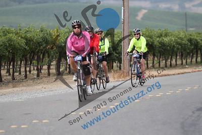 Tour de Fuzz 2013 Red Winery Rd