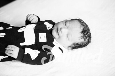 Leander Stephen Newborn Session (21)