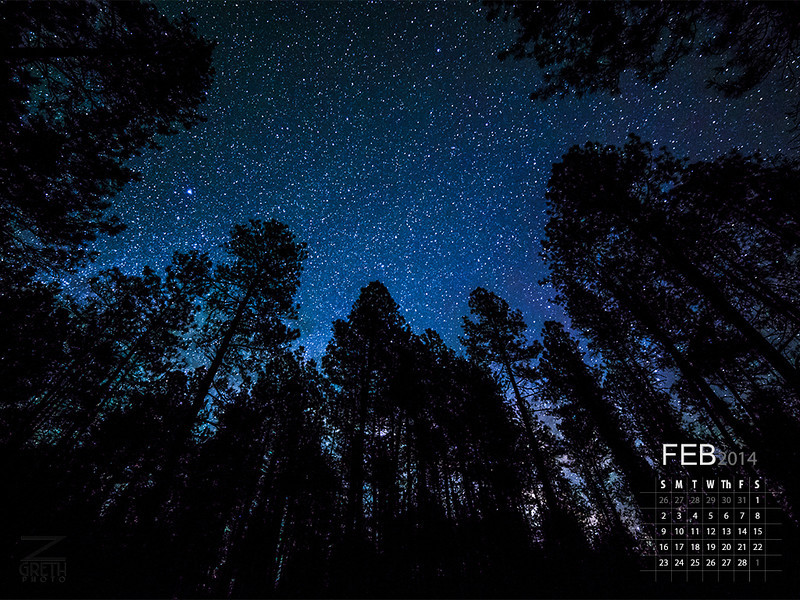 February - Tall Pines
