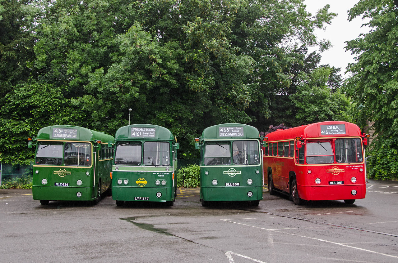 One of each version of RF. RF636 the country bus, RF26 the modenised Green Line coach, RF271 the original Green Line coach and RF354 the central area bus in Randalls Road car park, Leatherhead