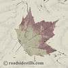 Autumn Maple Leaf ~ Square Print #520