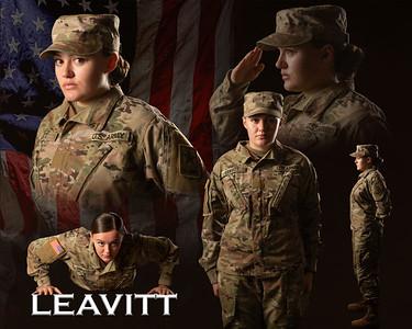Leavitt2