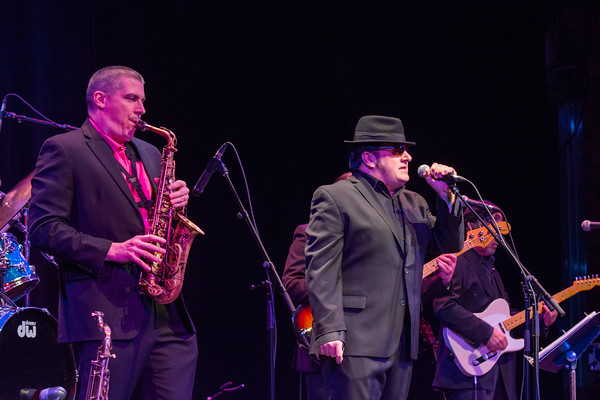 Moondance: The Ultimate Van Morrison Tribute