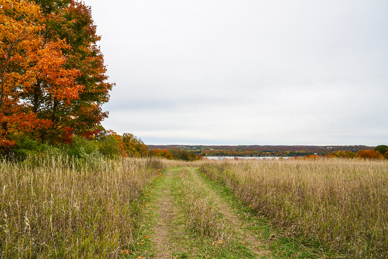 Path in the Conservancy's Clay Cliffs area