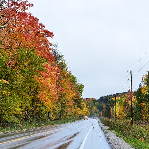 Rural highway, Leelanau County, fall, cars
