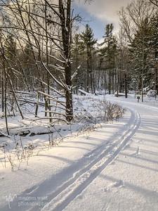 TLR-20200120-4659 Heritage Trail