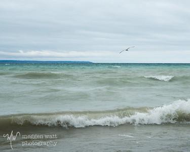 TLR-20200330-6075 Gull and Lake Michigan