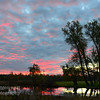 TLR-20151102-8793 - Sunrise Over Cedar River, pinks