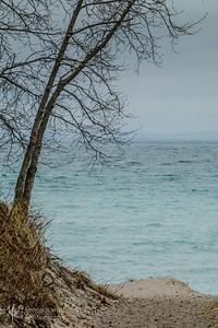 TLR20200316-1692 Gray Day at Leland's Beach