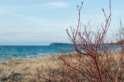 TLR-20170424-8752 Late afternoon, spring, Good Harbor