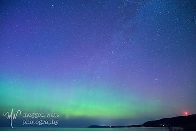 aurora borealis otter-4050