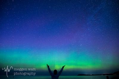aurora borealis otter-4051