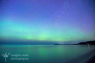 aurora borealis otter-4042