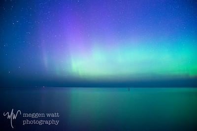 aurora borealis otter-4043