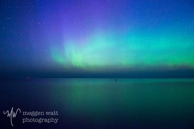aurora borealis otter-4041