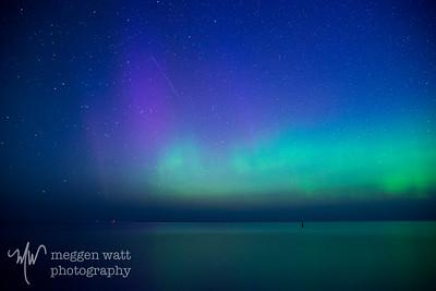 aurora borealis otter-4045