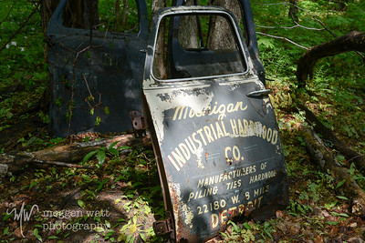 TLR-20160530-3315-Logging truck door, N Manitou