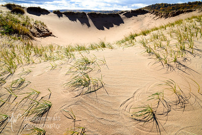 TLR-20151026-8679 - Sleeping Bear Dunes National Lakeshore sand circles and fall color