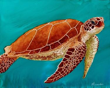 Harriet the Turtle
