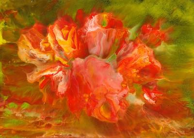 Grandma's Parlor Rose  2