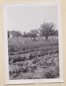 Ernest James - farm with honey/bee hives.  Photo taken by Allen O. Killmer.  Photo 1941.