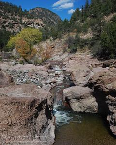 Turkey Creek near the hot springs, Gila Wilderness, New Mexico, October 2008.