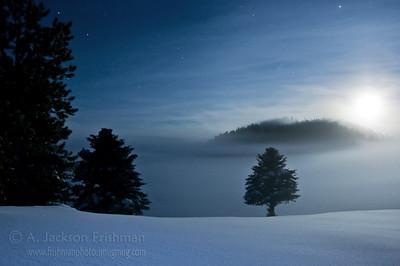 Moonrise through mist in Valles Caldera National Preserve, Jemez Mountains, New Mexico, January 2010.