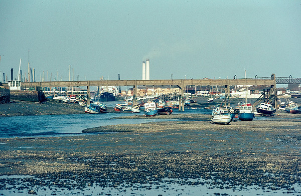 A Harbour View