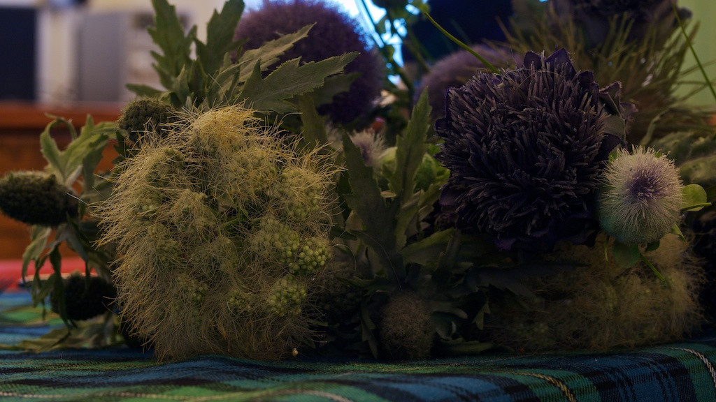 Decorative thistles