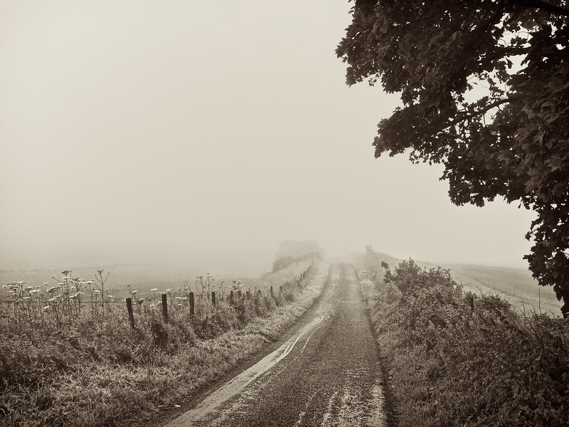 Into the Mist 3