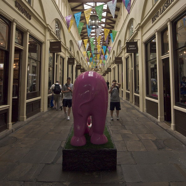Elephant Two - Pink Elephant in Covent Garden