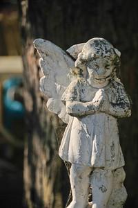 10 09-08 Angel looks over Molly's flower garden around her porch.  mlj