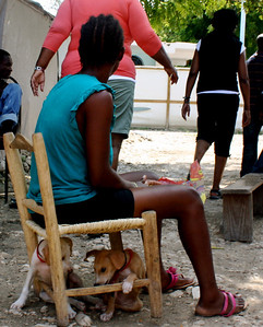 Two puppies use this woman's chair for shelter in Grace International's refugee camp.