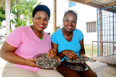 Beverly Black and Gloria Peaden sort beans together.