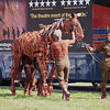 Warhorse leaving the horse box, Jubilee Family Day, Hyde Park