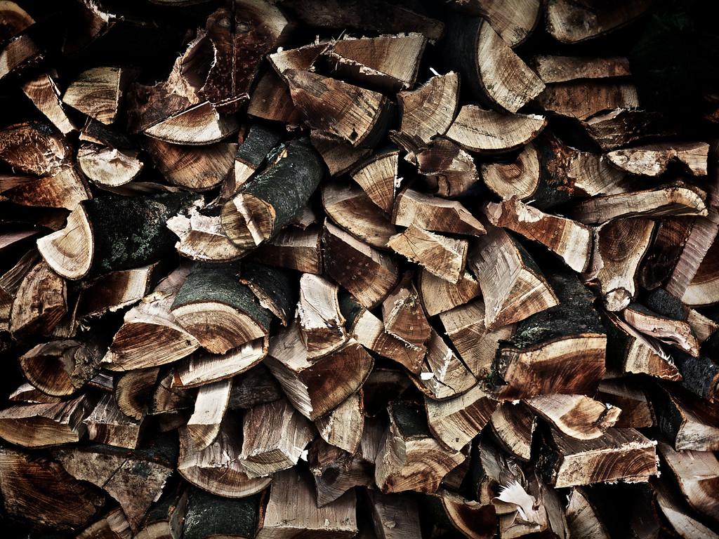 Firewood, Pillars of Hercules, Falkland
