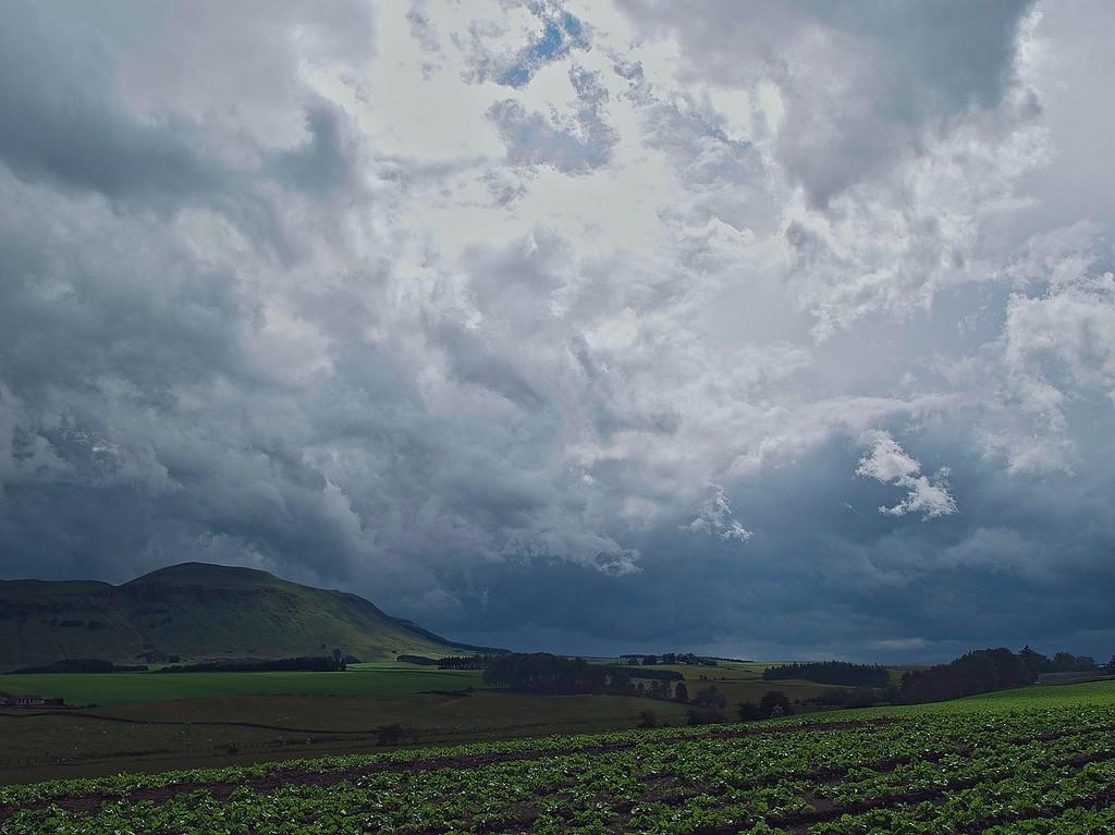 Before the cloudburst