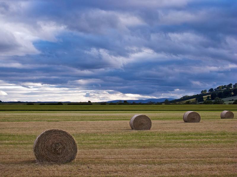 Hay Harvest, nr Dunning, Strathearn