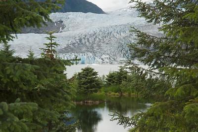 Artsy glacier shot through pines