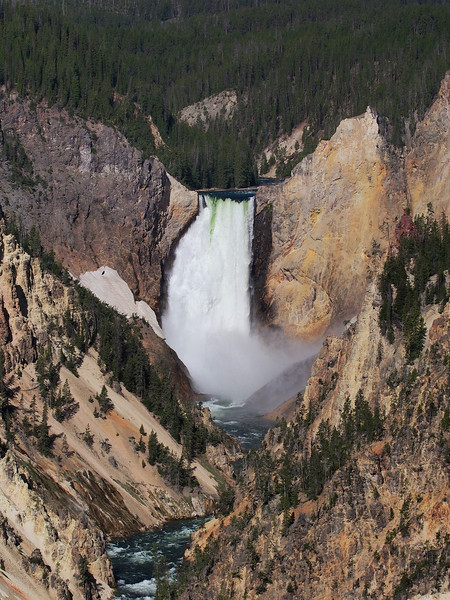 Lower Falls, Yellowstone River, Yellowstone NP