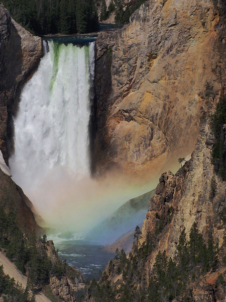 Rainbow at Lower Falls, Yellowstone River, Yellowstone NP