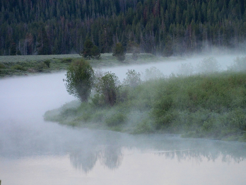 Morning met on the Snake River, Oxbow Bend, Grand Tetons NP