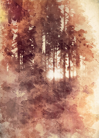 Light Through Fingers (Breath as Forest)