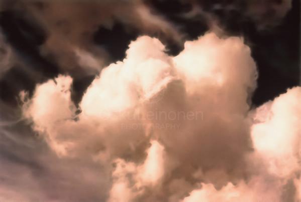 Elephant high Above the Sky