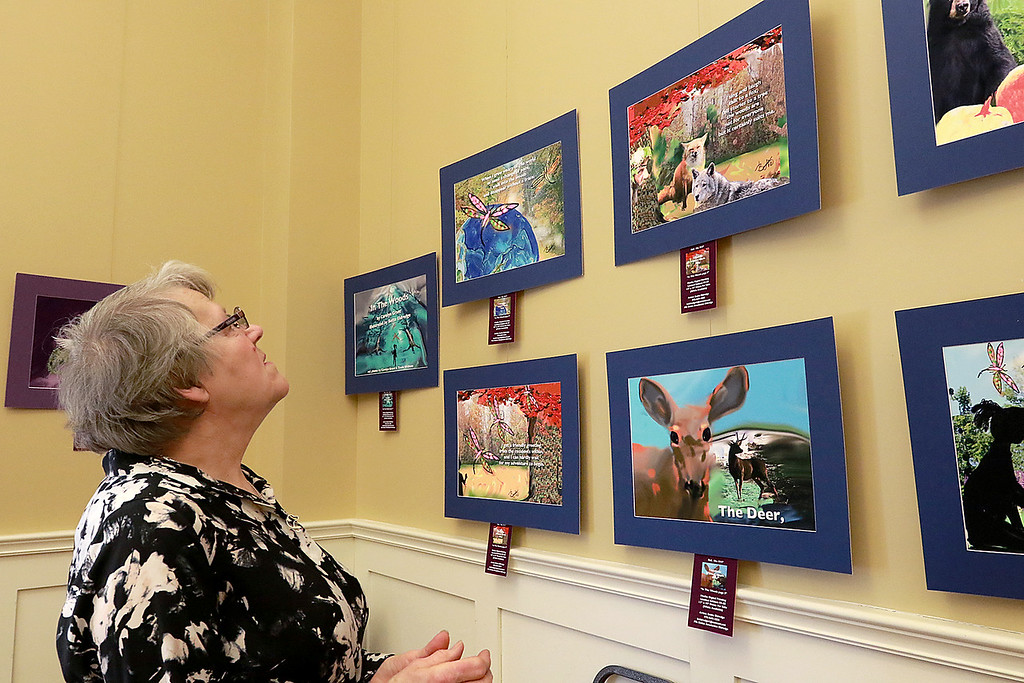 . Paintings and photography by legally blind artist Bette Avadanian Eldredge where on display at the Townsend Meeting Hall on Saturday, April 6, 2019. Eldredge\'s friend Mary Doyle looks over some of her work at the show. SENTINEL & ENTERPRISE/JOHN LOVE
