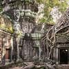 Ta Prohm temple at Angkor