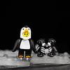 Penguin boys and bear friends.